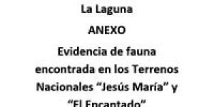 Anexo-de-Opinion-Tecnica-de-CONANP-RBSL-Los-Cardones-2013_Evidencia-de-Fauna