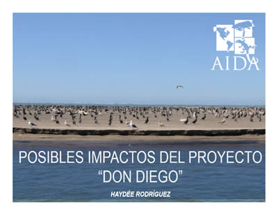 don_diego_webinar_impactos_haydee