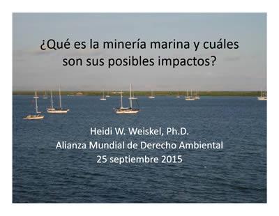 que_es_la_mineria_y_sus_impactos_heidi_weizkel_elaw